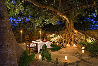 Romantic Hacienda Dinner for Two